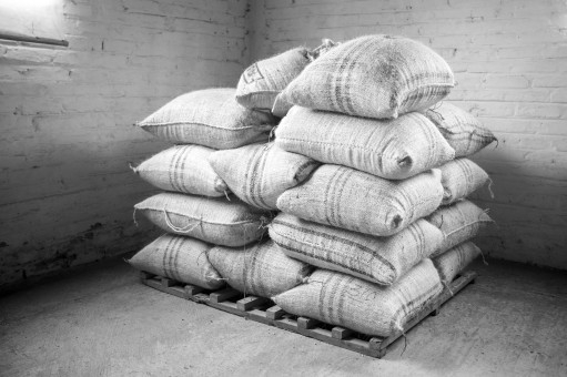 Sacks of green coffee piled on a pallet awaiting export.