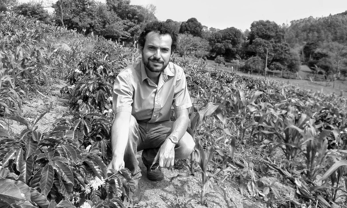 Jonas in a coffee field inspecting young shrubs
