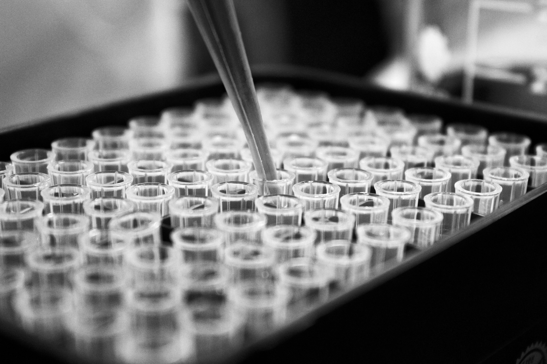 A pipette dipping into test tubes in close-up