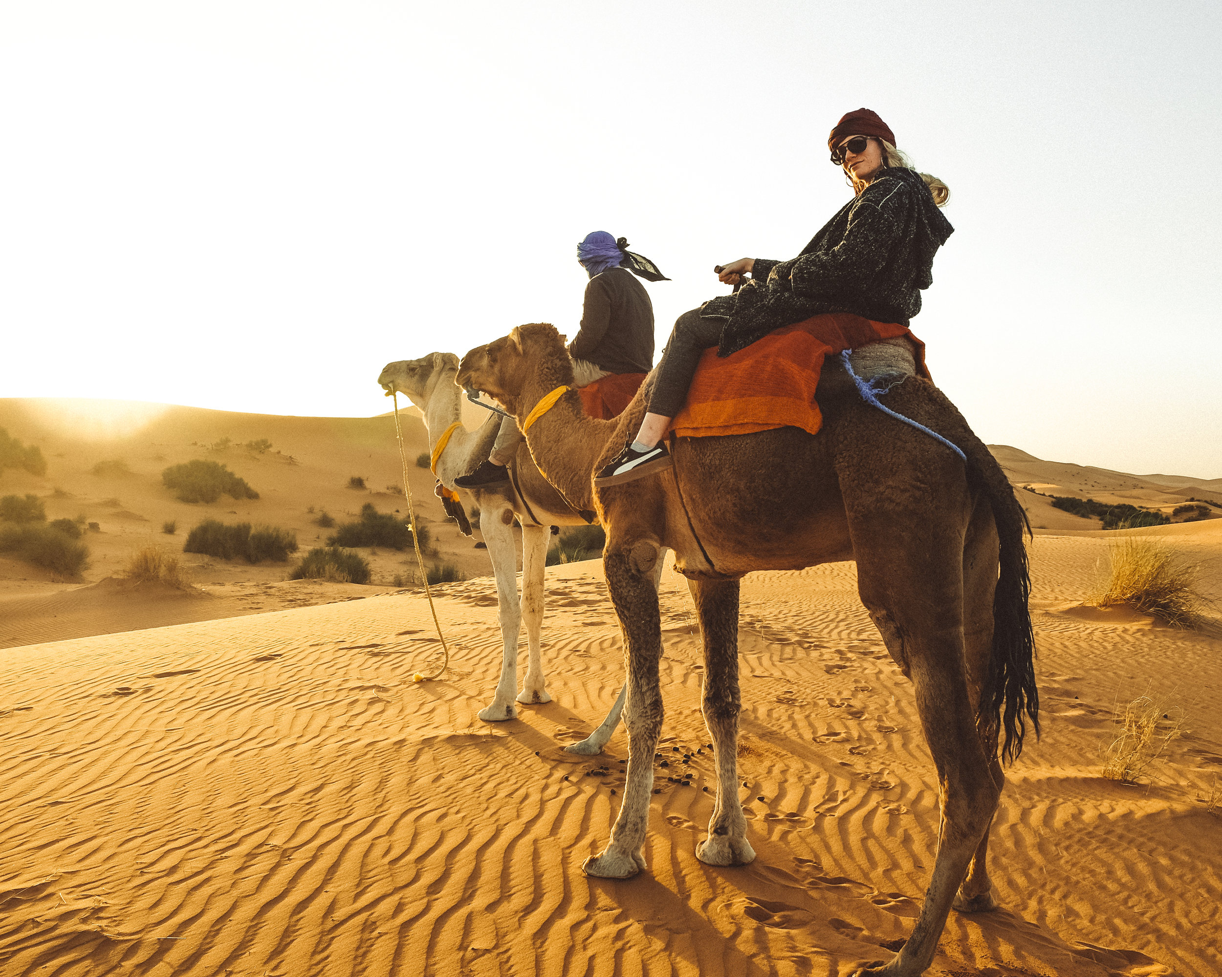 "Because everyone should ride camels through the Sahara Desert in North Africa before returning to their ""campsite"" with Wi-Fi, air conditioning, and four coursed meals."