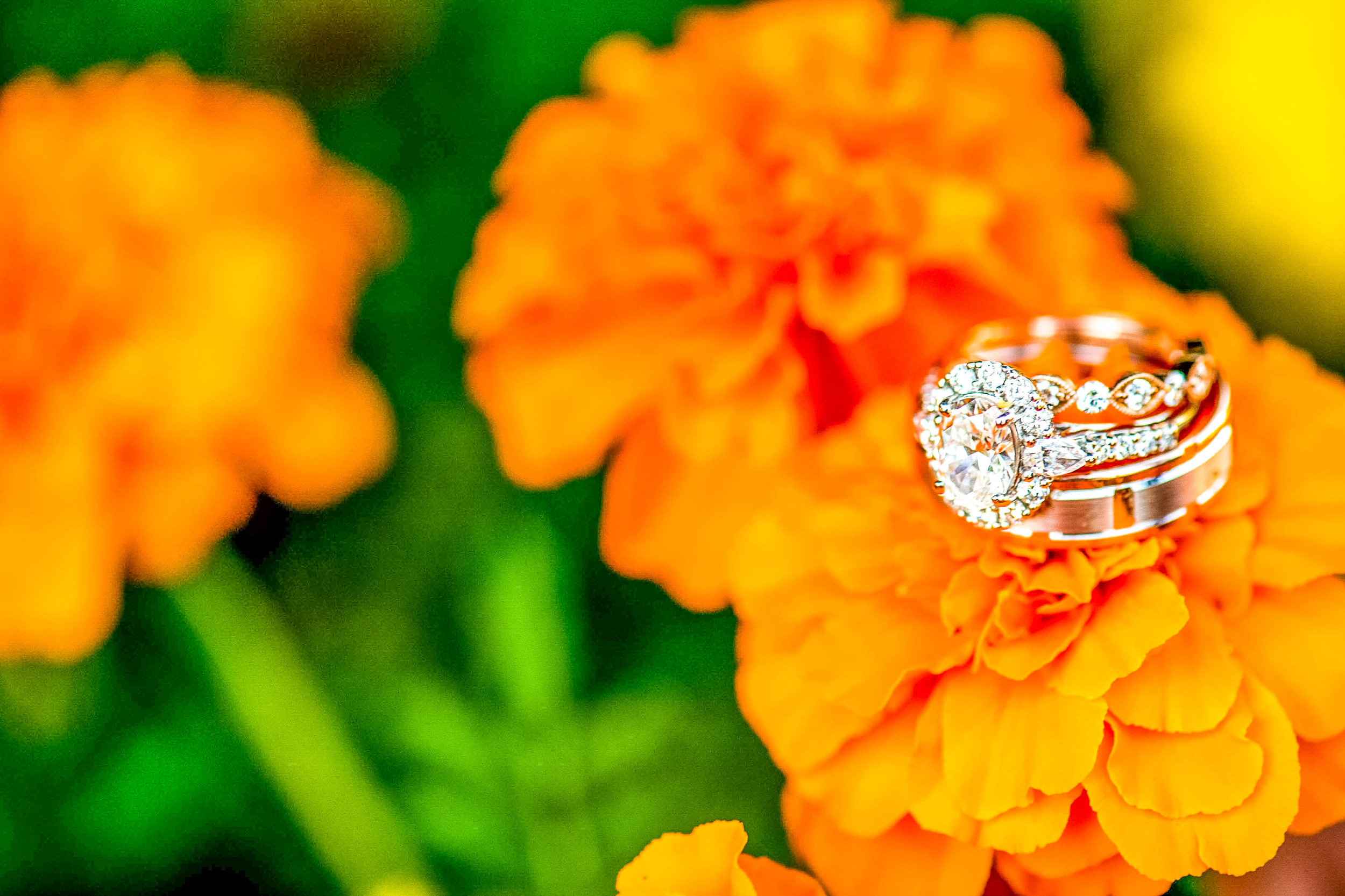 Wedding Ring by Classic Photographers