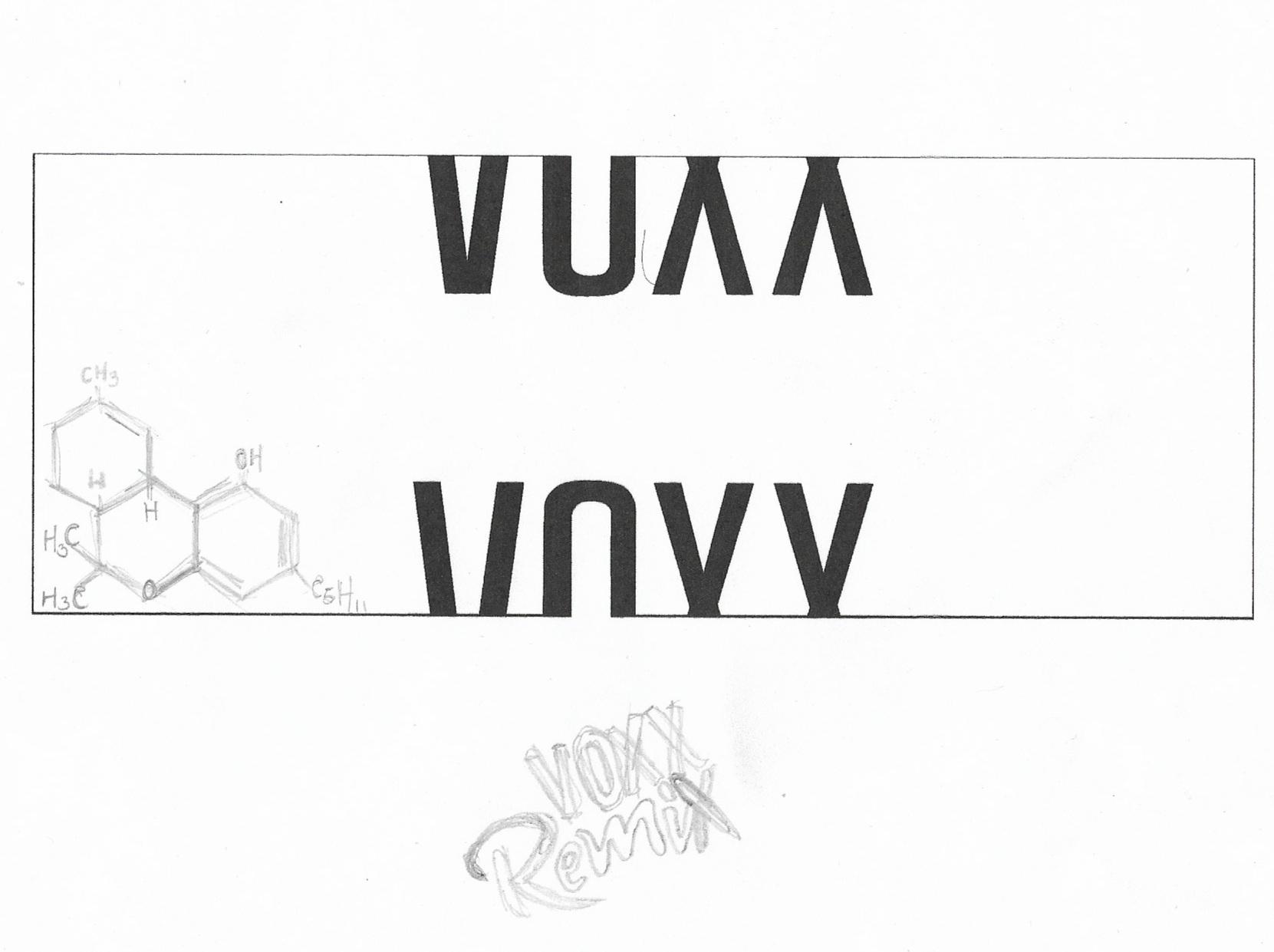 voxx sketch 4.jpg