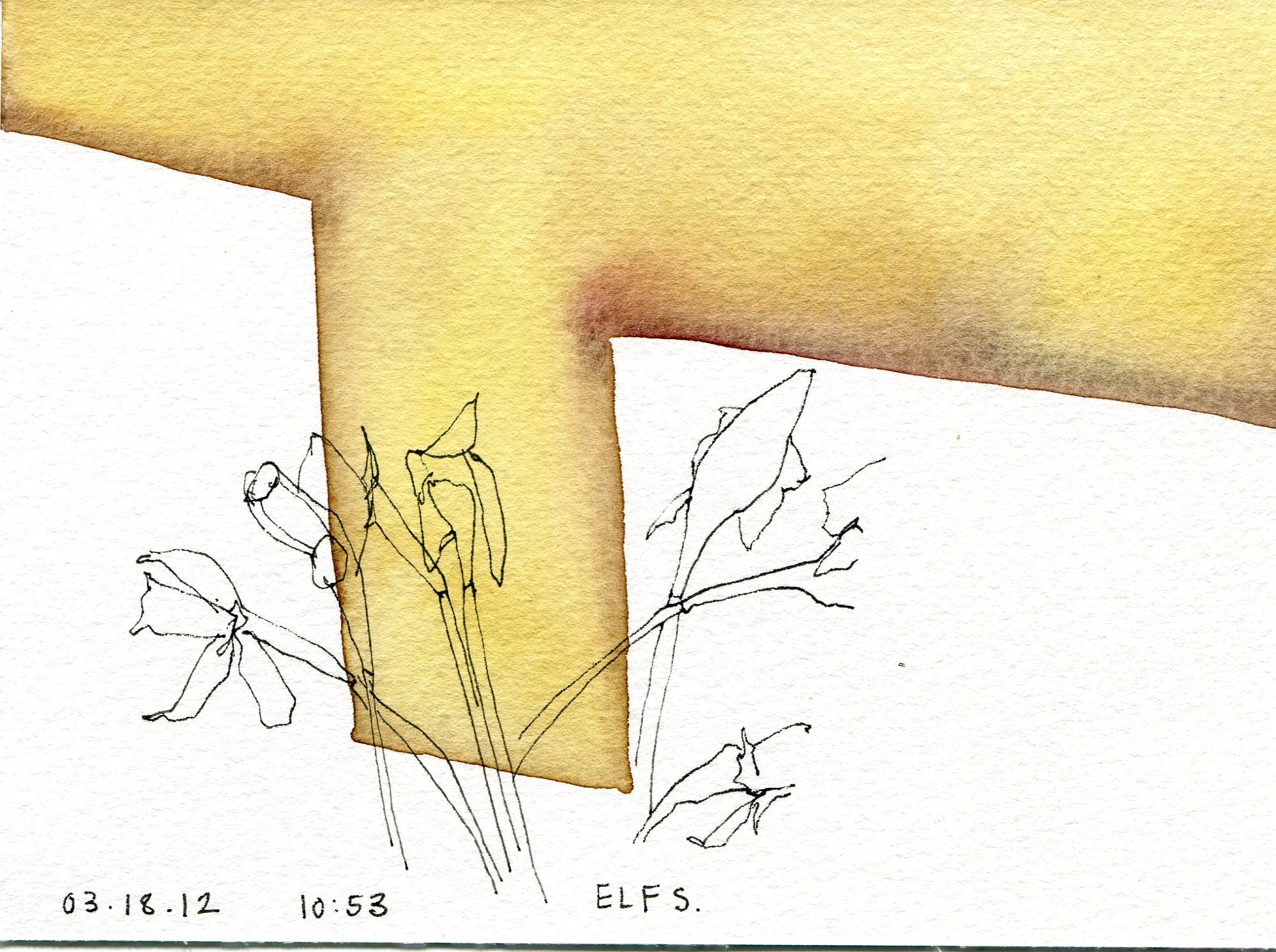 2012-03-23 drawing001.jpg