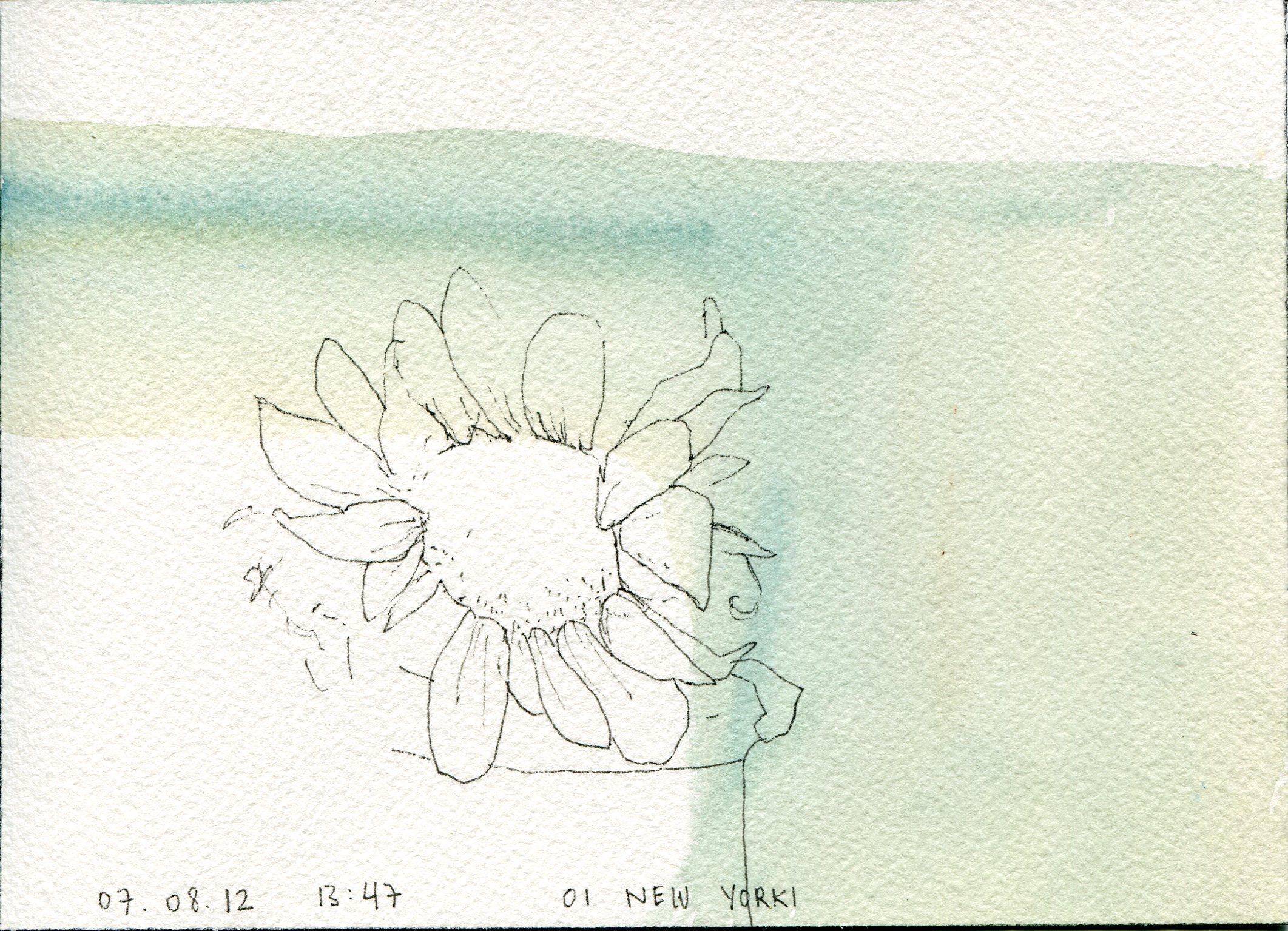 2012-07-08 drawing009.jpg
