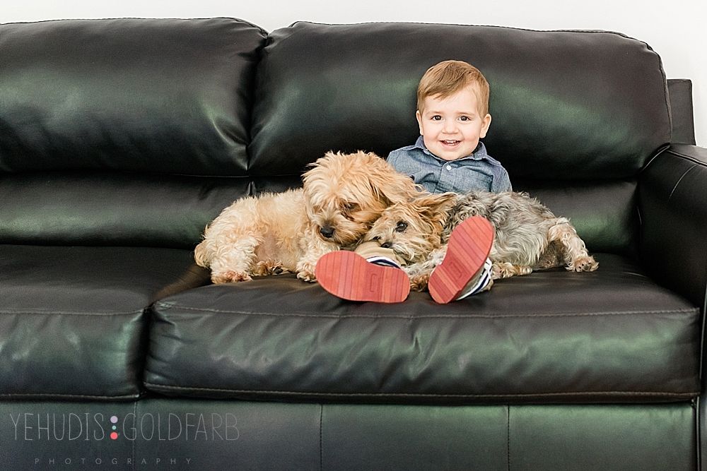 1_silver-spring-lifestyle-session-boy-with-his-dogs.jpg