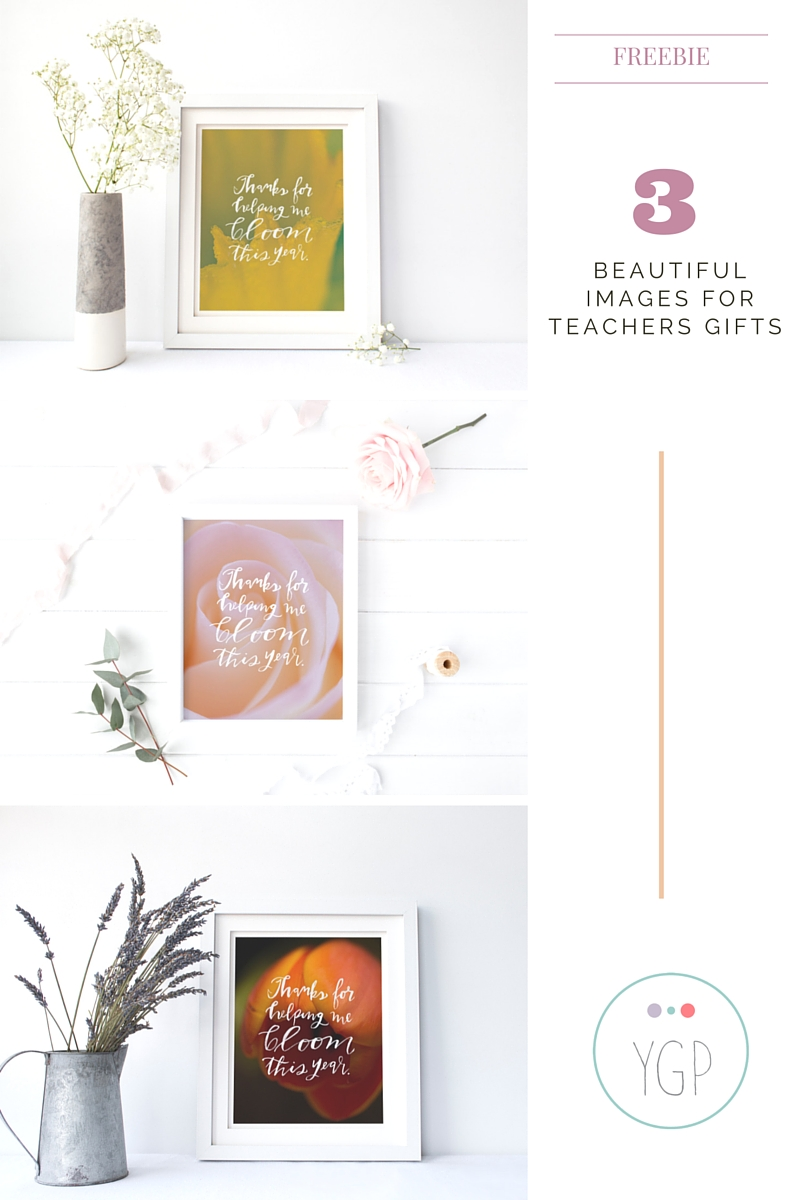 Teachers-Gifts-Yehudis-Goldfarb-Photography_0001