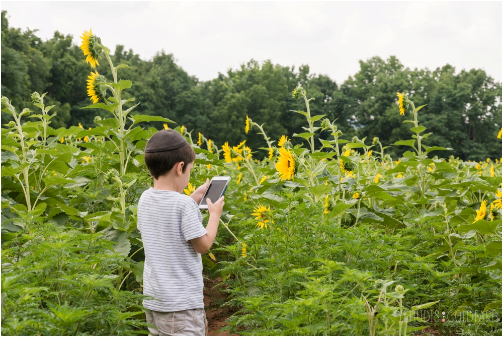 Sunflower-Mini-Sessions-Yehudis-Goldfarb-Photography_0002.jpg