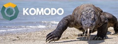 101 Series: Komodo