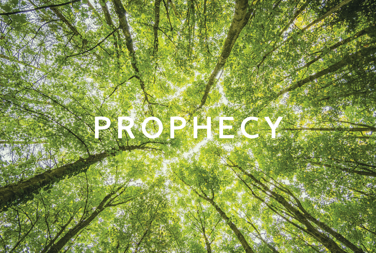 Prophecy-web-image.png