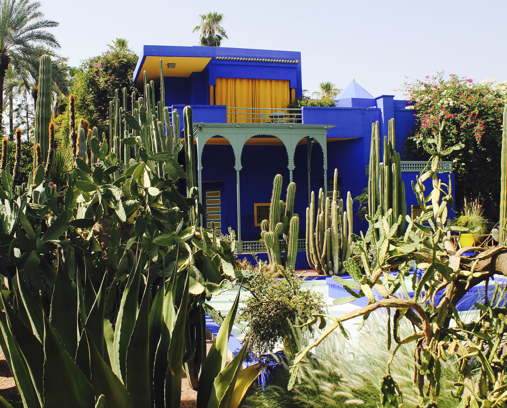 "DAY 5 - Today we will visit one of Morocco's most famous sites. Le Jardin Majorelle. It took French painter Jacques Majorelle (1886-1962) forty years of passion and dedication to create this enchanting garden in the heart of the ""Ochre City"". After getting our best shots from the garden, we will then head to the museum and learn more about the Berbers and their fascinating history. Later that afternoon we will also stop by the Yves Saint Laurent Museum."