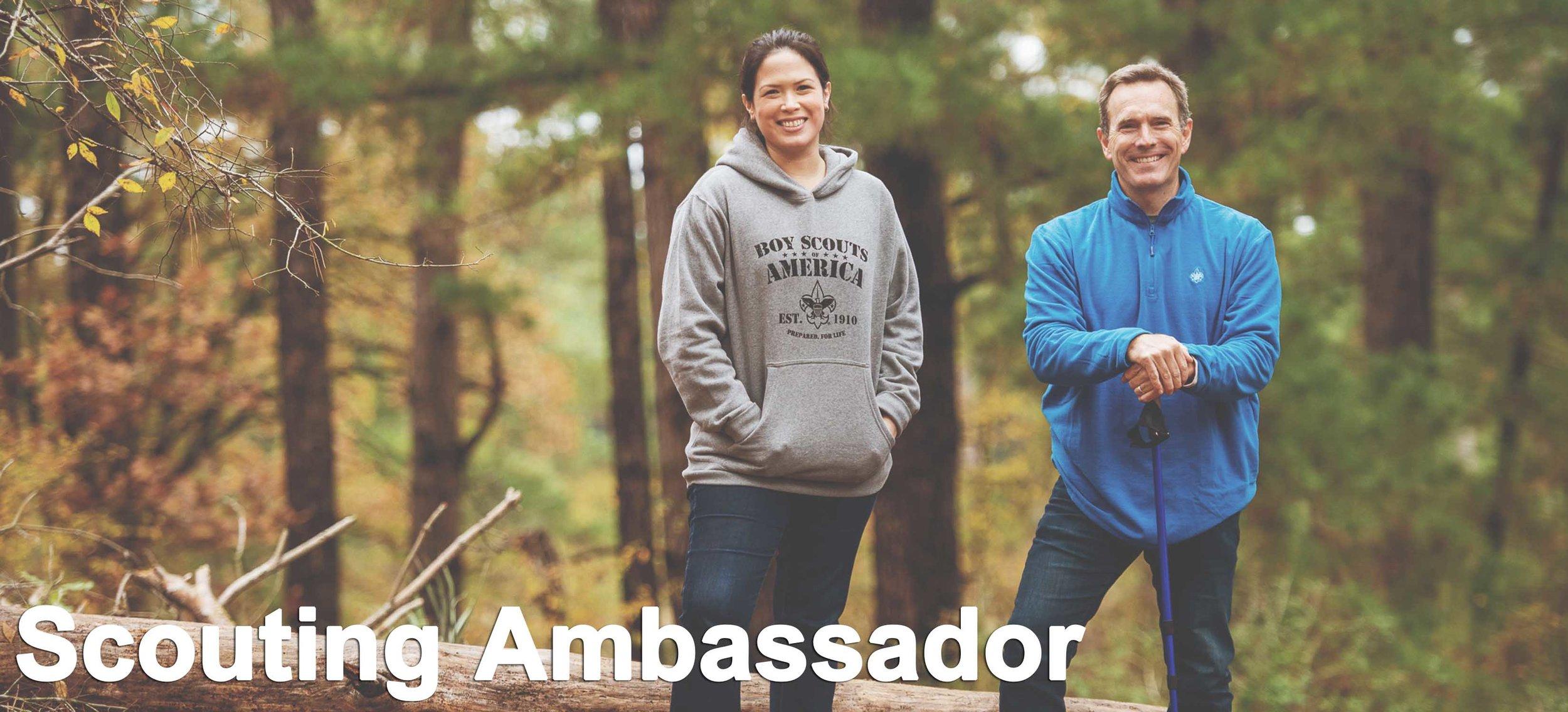 scouting ambassador banner low res.jpg