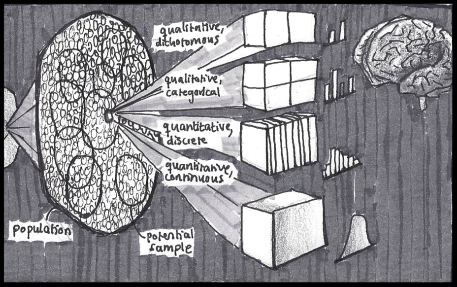 """The brain categorizes objects and events into """"populations"""". Each member's state of the population may differ on an indefinite number of dimensions, or """"variables"""". The distribution of variable states in the population determines a certain state's long-term frequency - in other words, its probability. By probing a subset of the population (a sample) we hope to estimate this probability."""