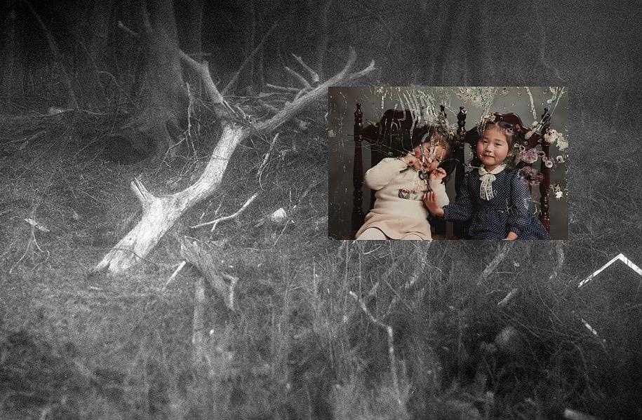 Photobook Review: The Restoration Will - Mayumi Suzuki - Review by Charlotte Vignau
