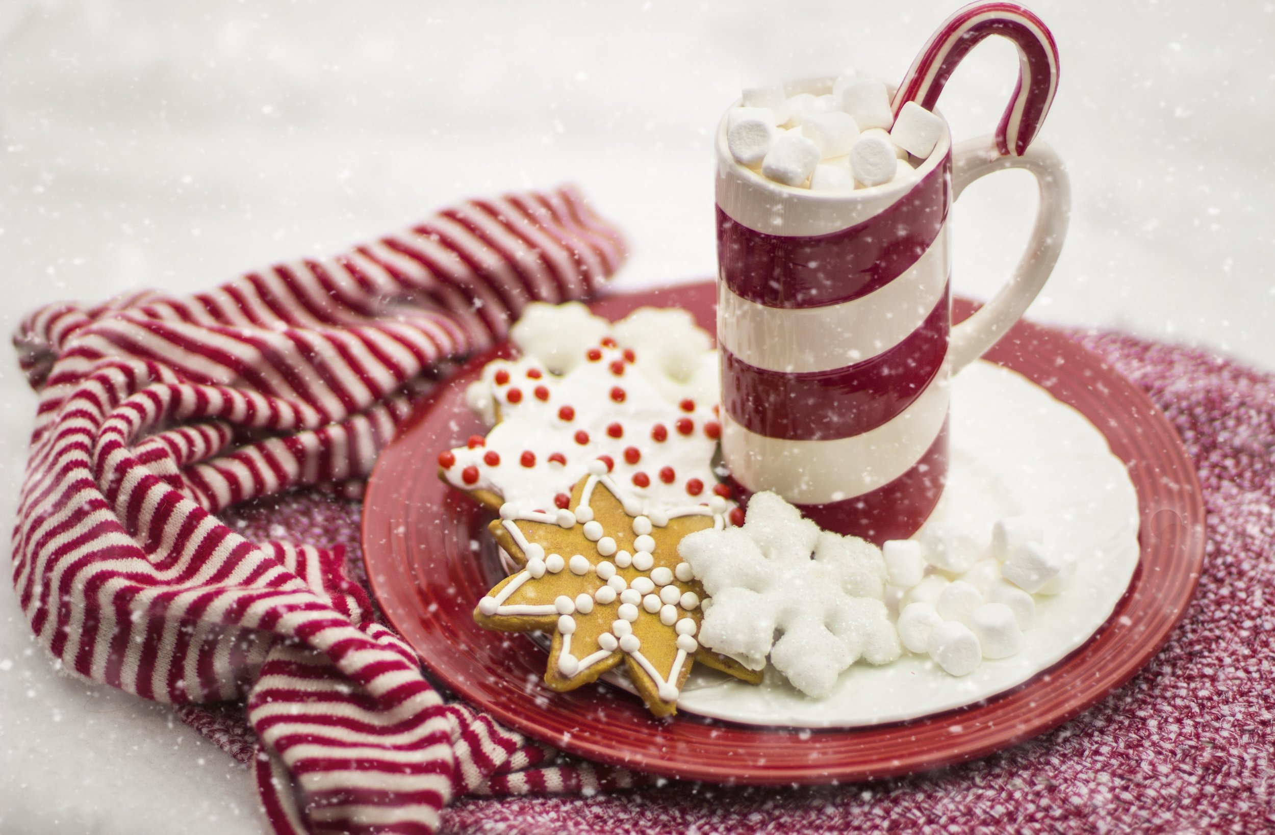 beverage-candy-candy-cane-260476.jpg