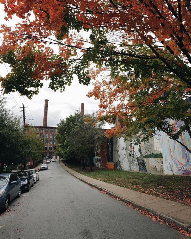 finally looking like fall 🍂