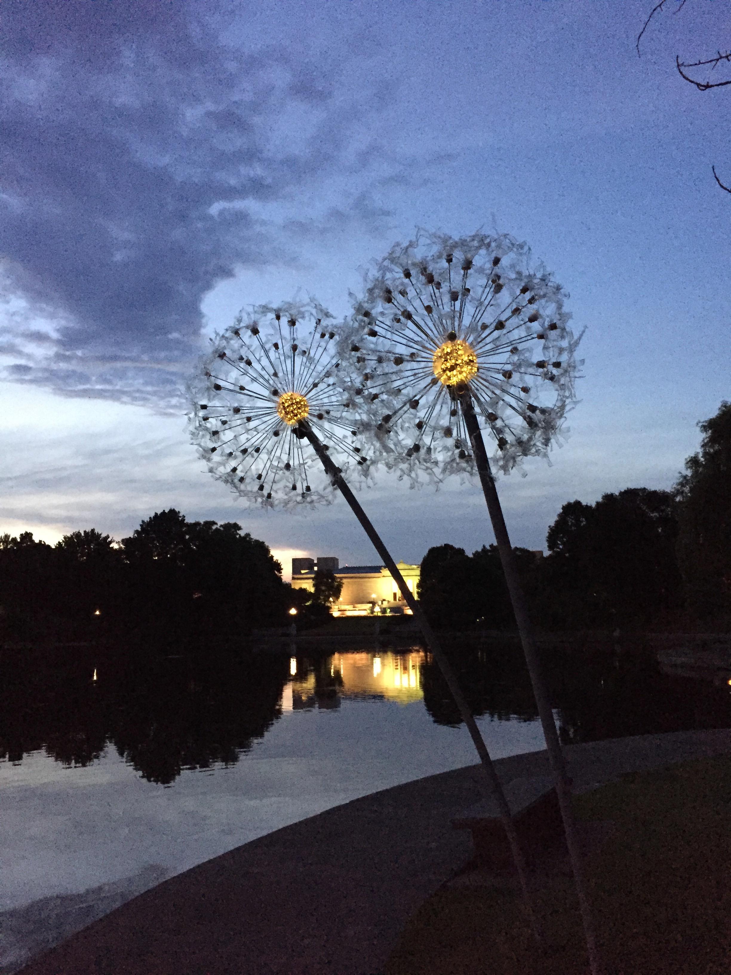 Dandelions, Year