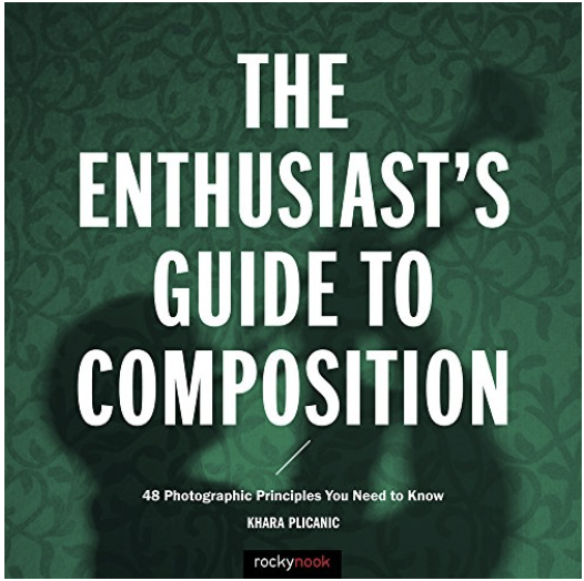 The Enthusiast's Guide to Composition - 48 Photographic Principles You Need to Know