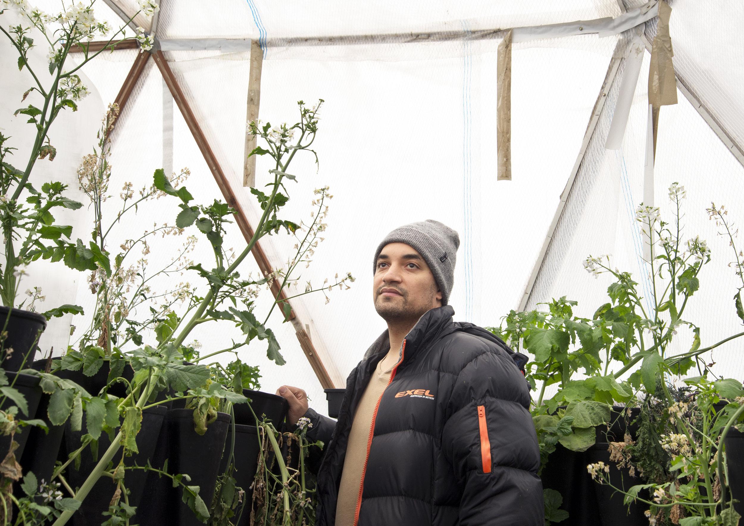 Chef Ben in his Polar Garden.