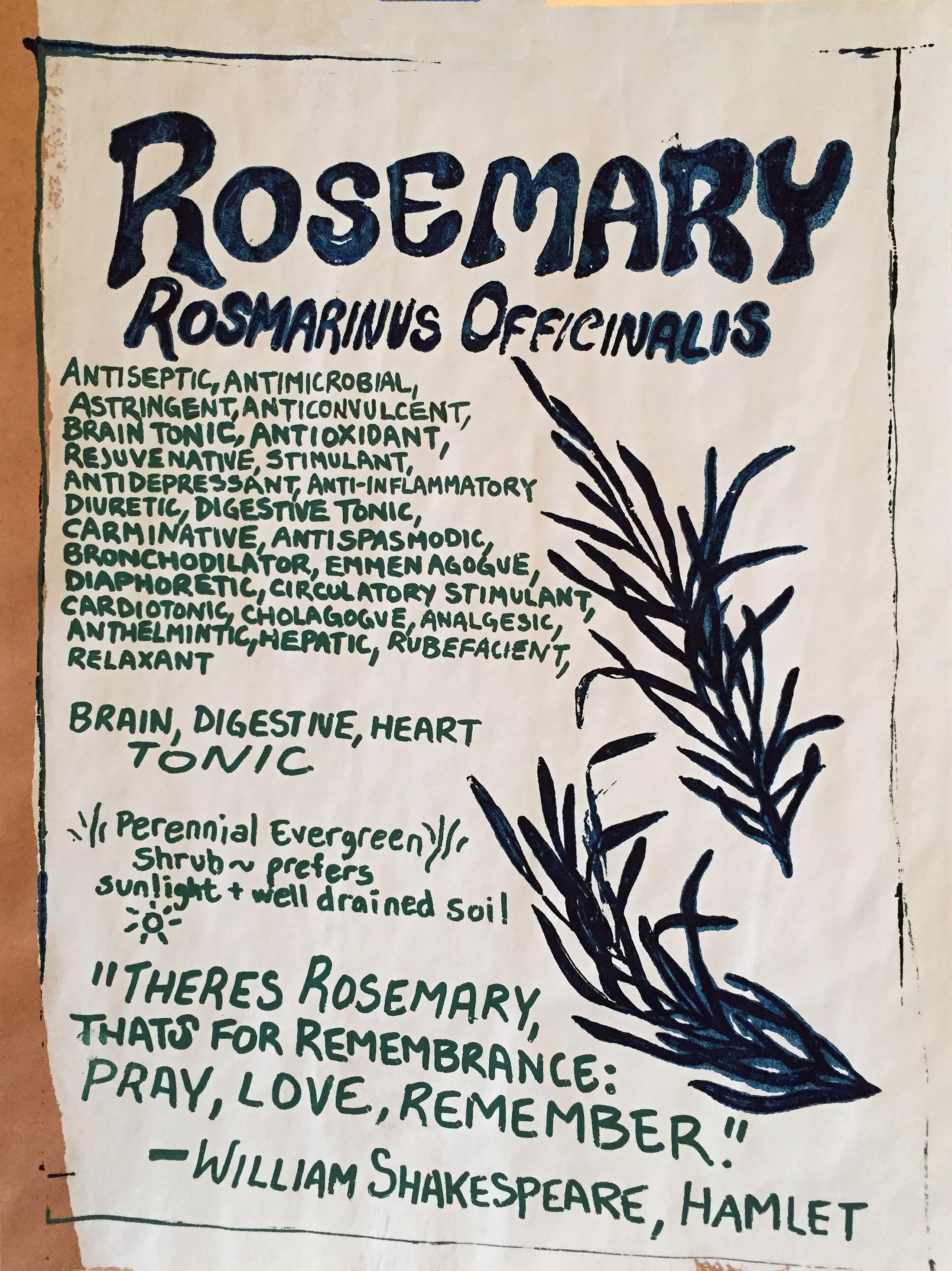 rosemaryposter.jpg