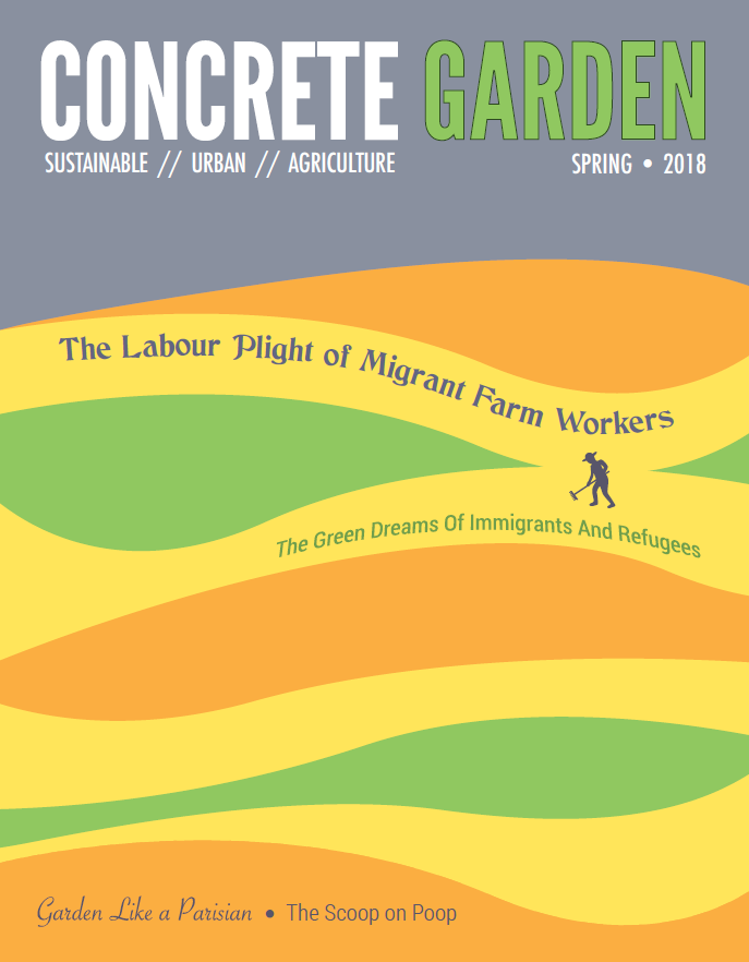 Interview in 2018 Concrete Garden magazine cover story by Stephanie Harrington.