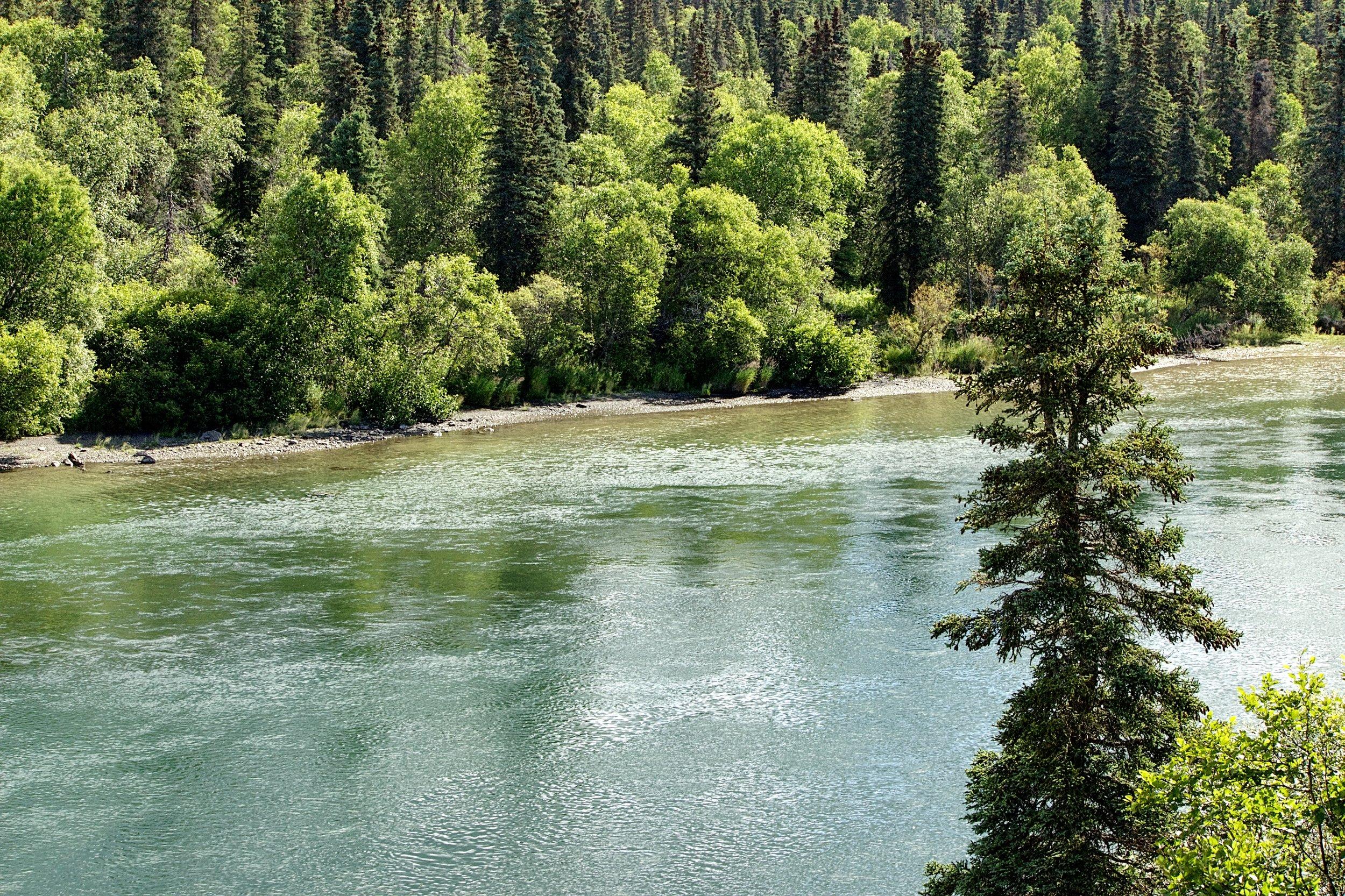 Wood River.jpg.jpeg