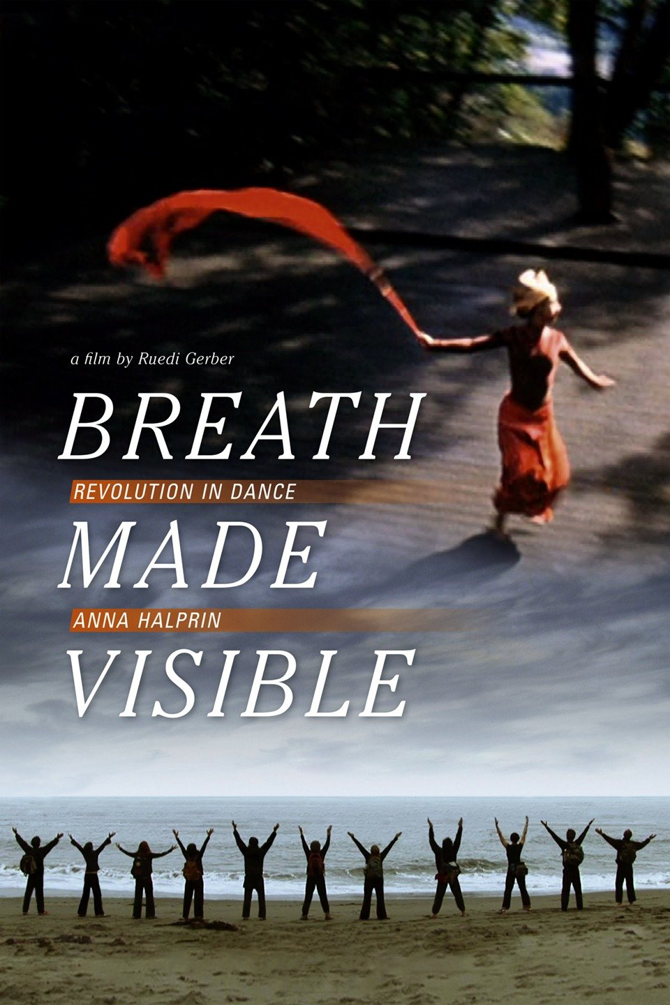 breathmadevisible_poster.jpg