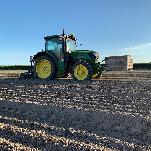 Started planting 🚜red onions today during this good weather. ☀️Hopefully we will have a few in before the rain on the weekend ☔️