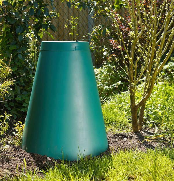 Green_Cone_backyard.jpg.625x625_q85.jpg