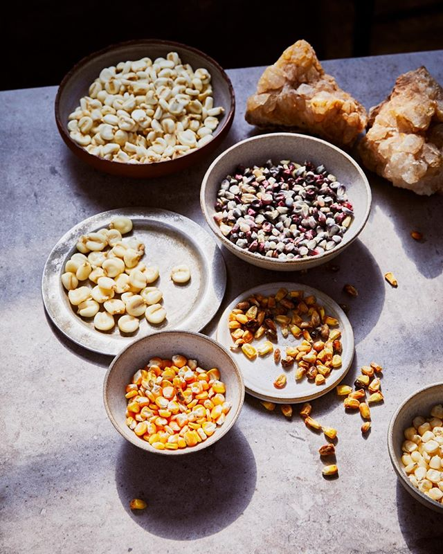 🌽 different varieties of corn 🌽 COBA Will be open on the 5th of september! Book your table online! #taqueriaamsterdam