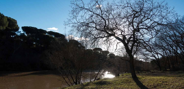 rio-duero-tarsila.jpg