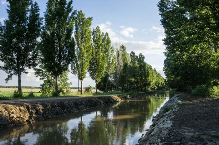 canal-duero-bodega.jpg