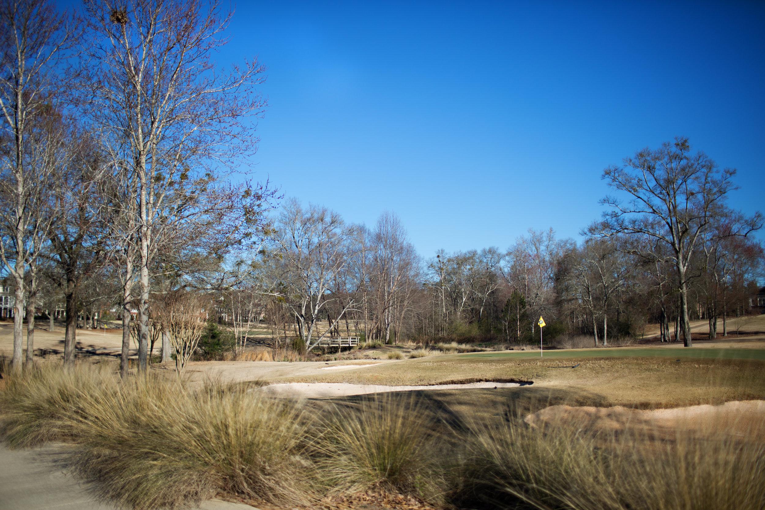 Golf Course Views from Fairway Heighst at The Georgia Club.jpg