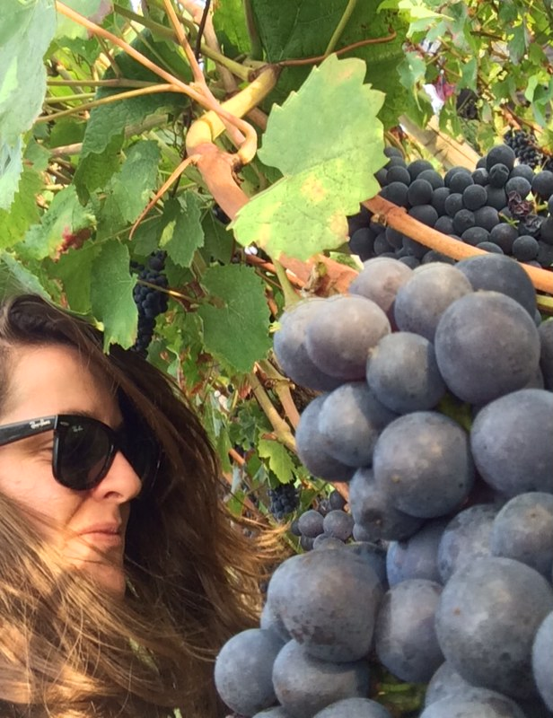 Maria - Bedales' Wine Manager - Working the vineyards in Priorat, Spain