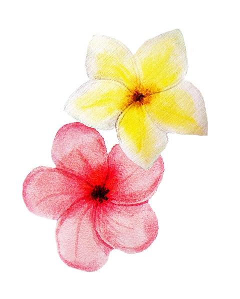 bouquet-8.jpg