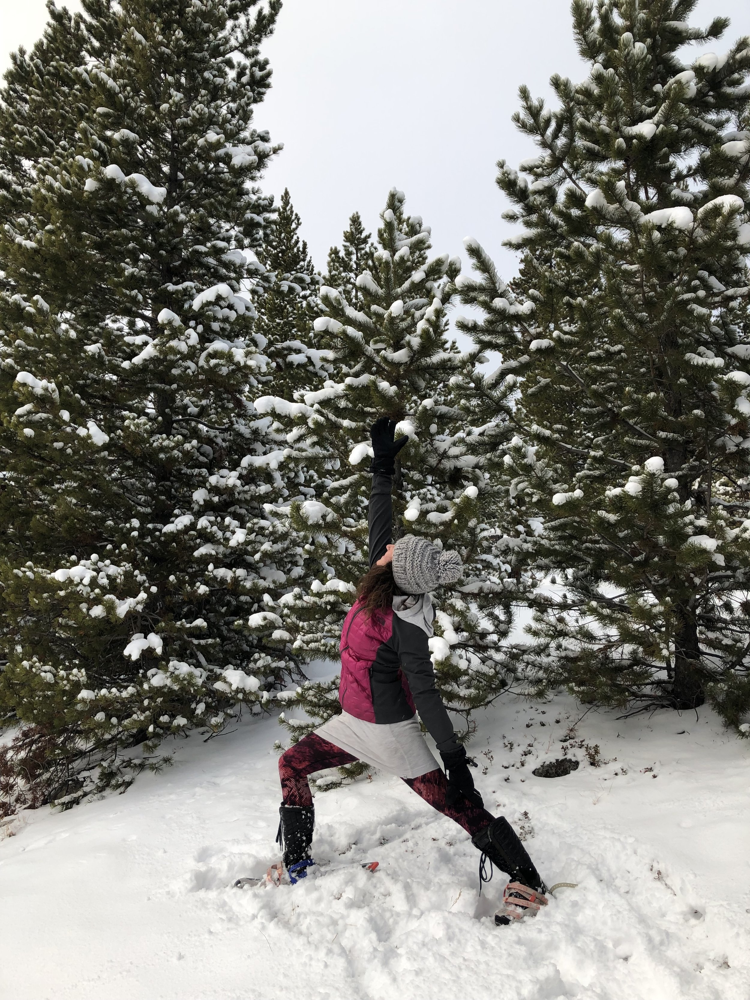 "TAKE IT OUTDOORS for SNOW FLOW - A snowshoe + yoga experienceWhat people are saying about their experience with me:""If you are looking for an amazing and fun experience- don't look any further! We had AMAZING time with Angie!""""Angie is a wonderful person who spreads the positive energy and makes you feel like you are an old friend. Great guide and yoga instructor! """"Angie was our first guide with her trusty dog, Hans. She was so wonderful about helping us get our straps right with our snowshoes and making sure we were able to hike well in them. She's also very sweet and funny.""""She took us for snowshoe hike to a magical place with beautiful views in the serene environment - it was breathtaking! She gave us all the instructions we needed and doing yoga poses in snowshoes was so much FUN!:-) We loved it! We will definitely be back for next experiences with Angie :-). Highly recommended!""Contact me for more information and to set up your private SNOW FLOW experience for your small group today!"