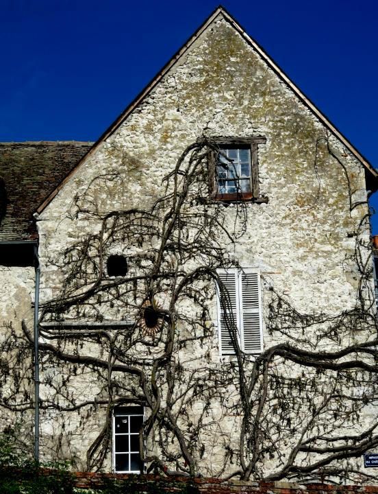 NOYERS 9  15 x 11 inches dig print with hand color.JPG