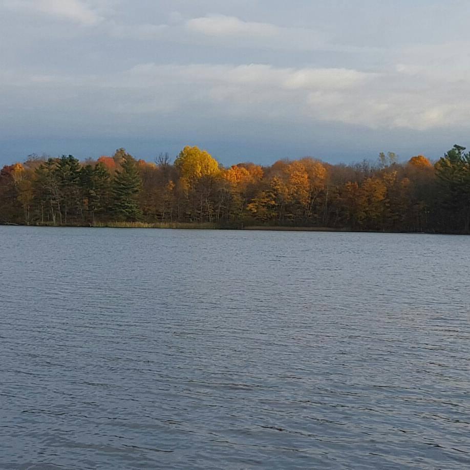 View from the shore at Rutgers Bay Lake Lodge