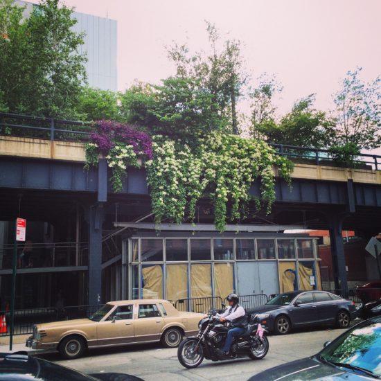 The Highline.jpg