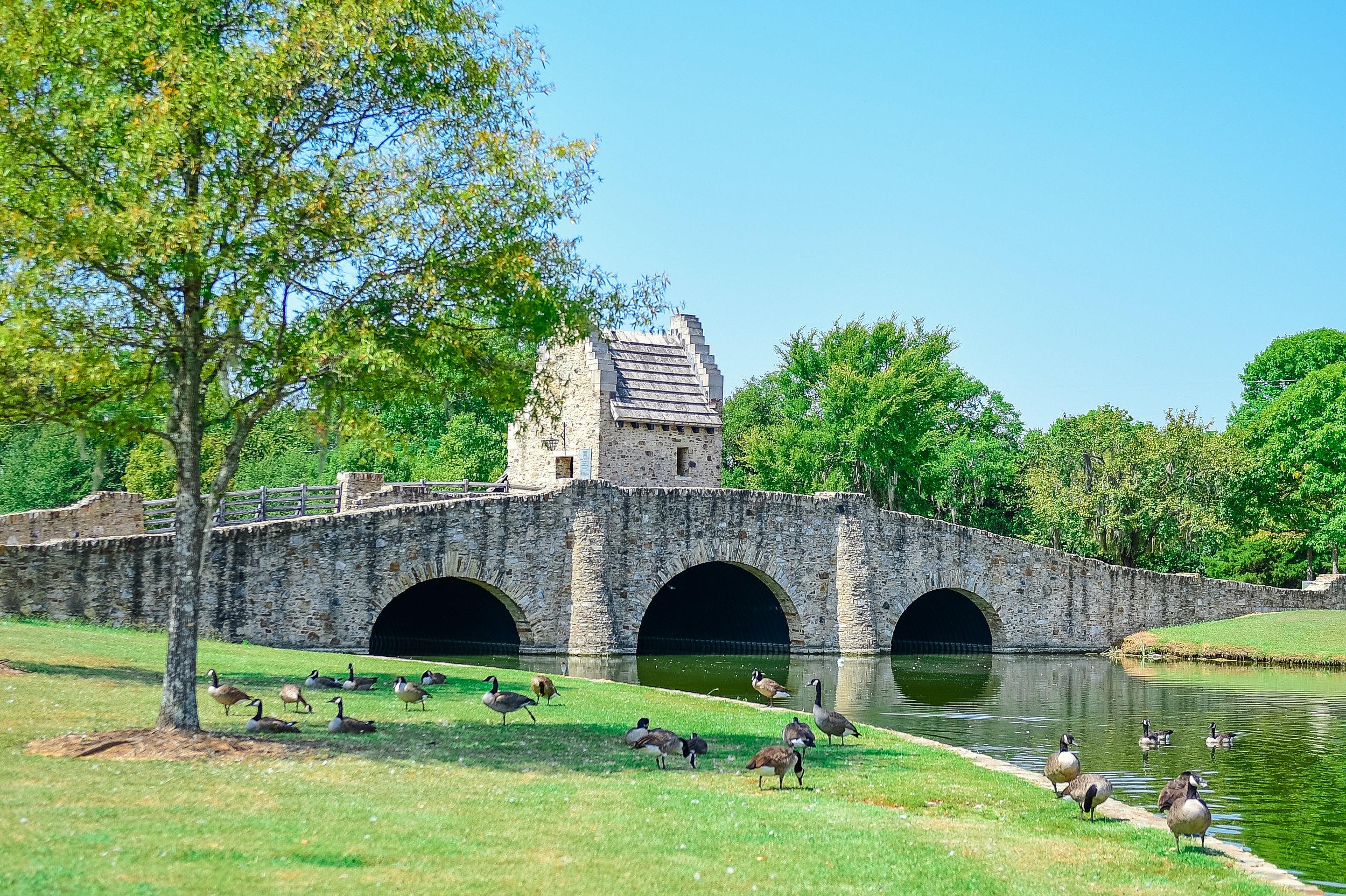 Bridge-21.jpg