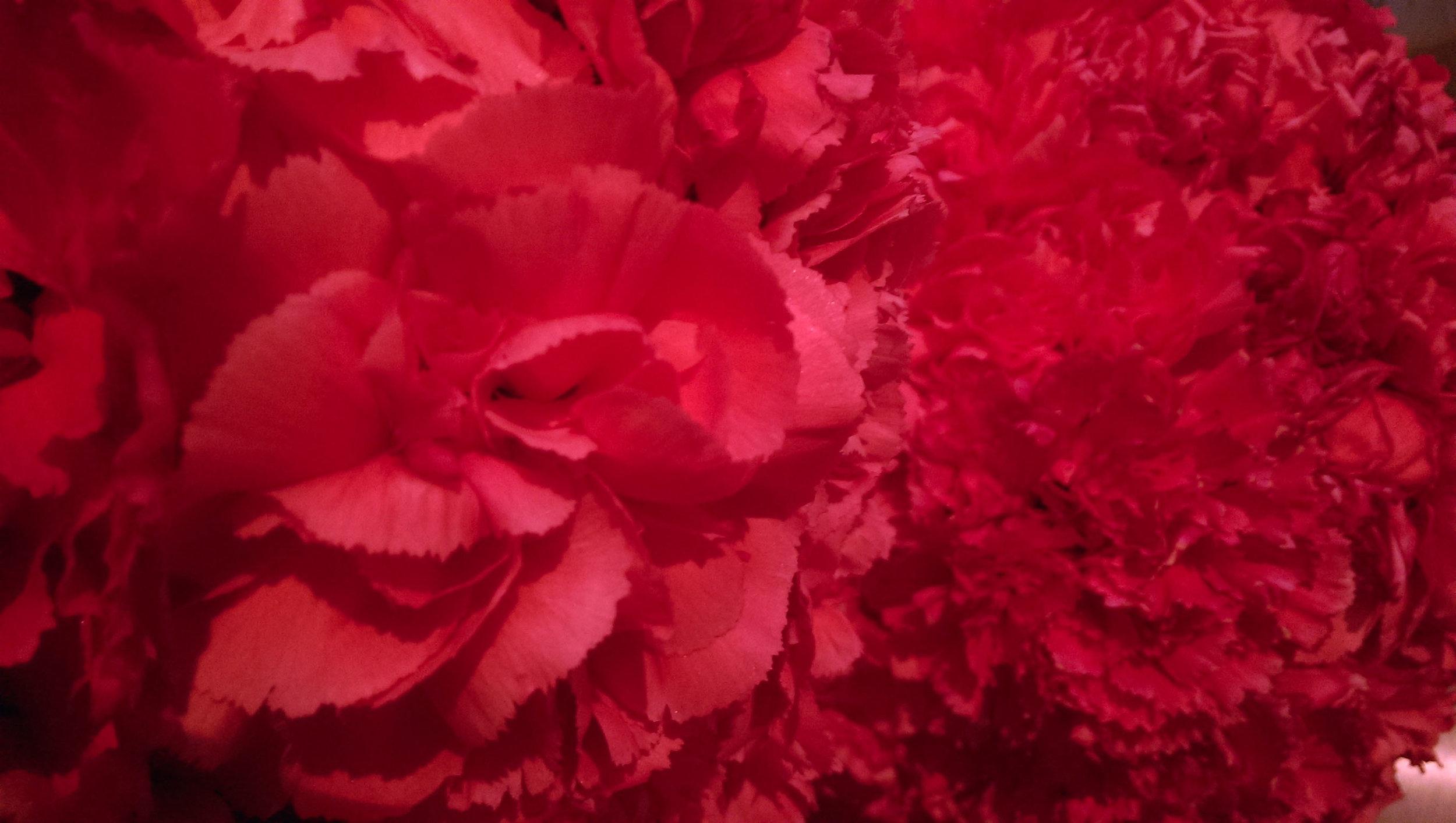 flower balls manolo falke copy.jpg