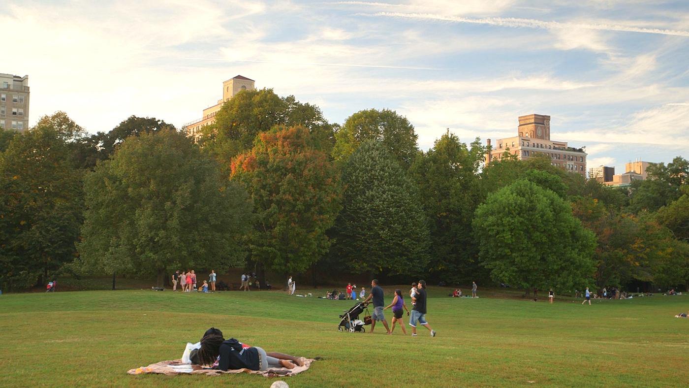 Prospect Park Great Lawn