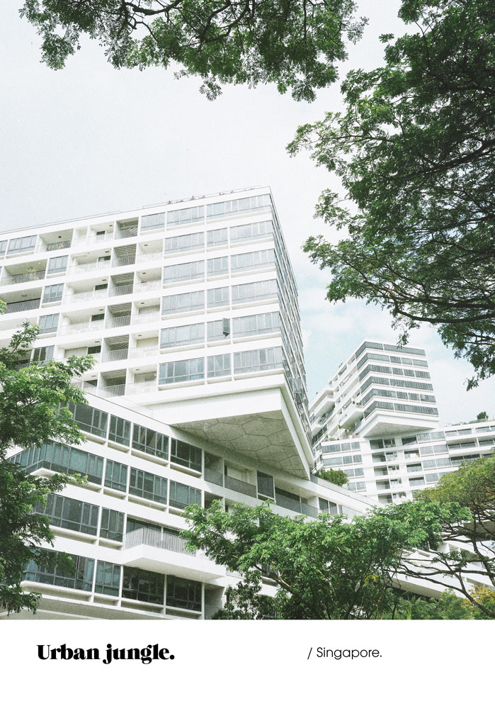 Olympus-PEN-F-Clan-Singapore-Jimsandkittys-interlace-condo.jpg