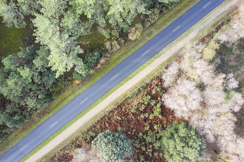 route arbre2.jpg