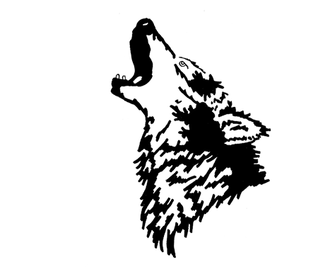 NEW BOLD HOWLING WOLF_SMALL.png