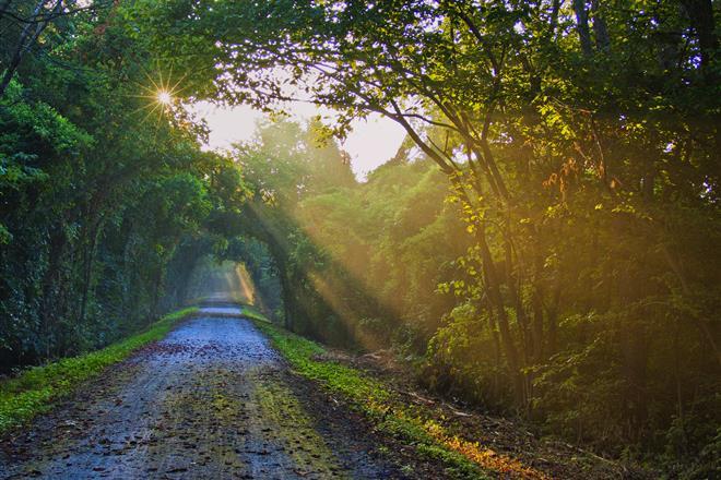 Katy Trail sunshine photo.jpg
