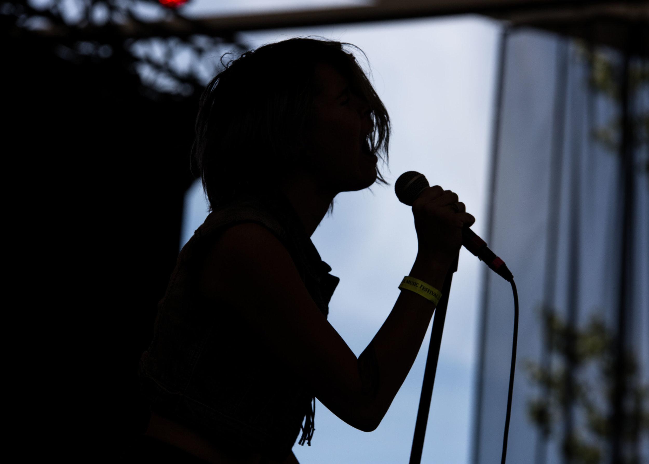 Rock festival--2.jpg