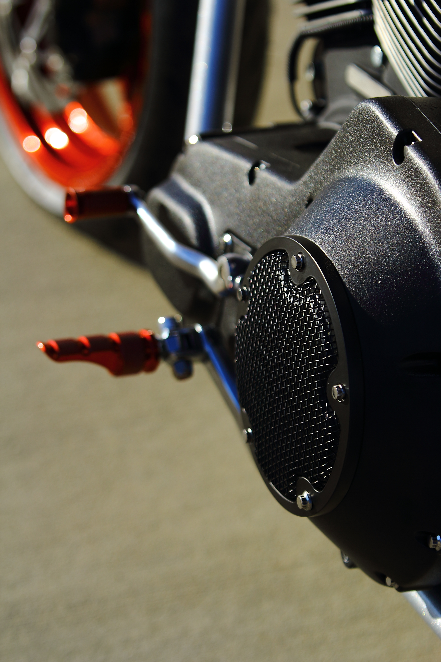 A1Cycles-AngryBitch016.JPG