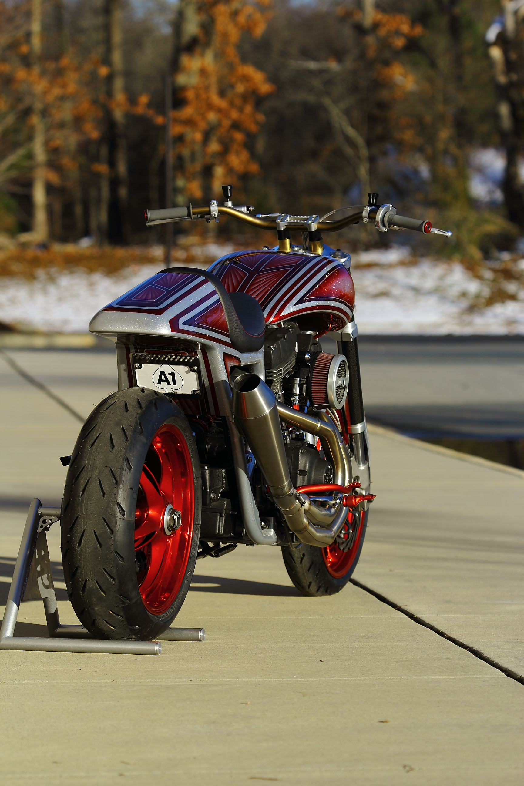A1Cycles-AngryBitch048.JPG