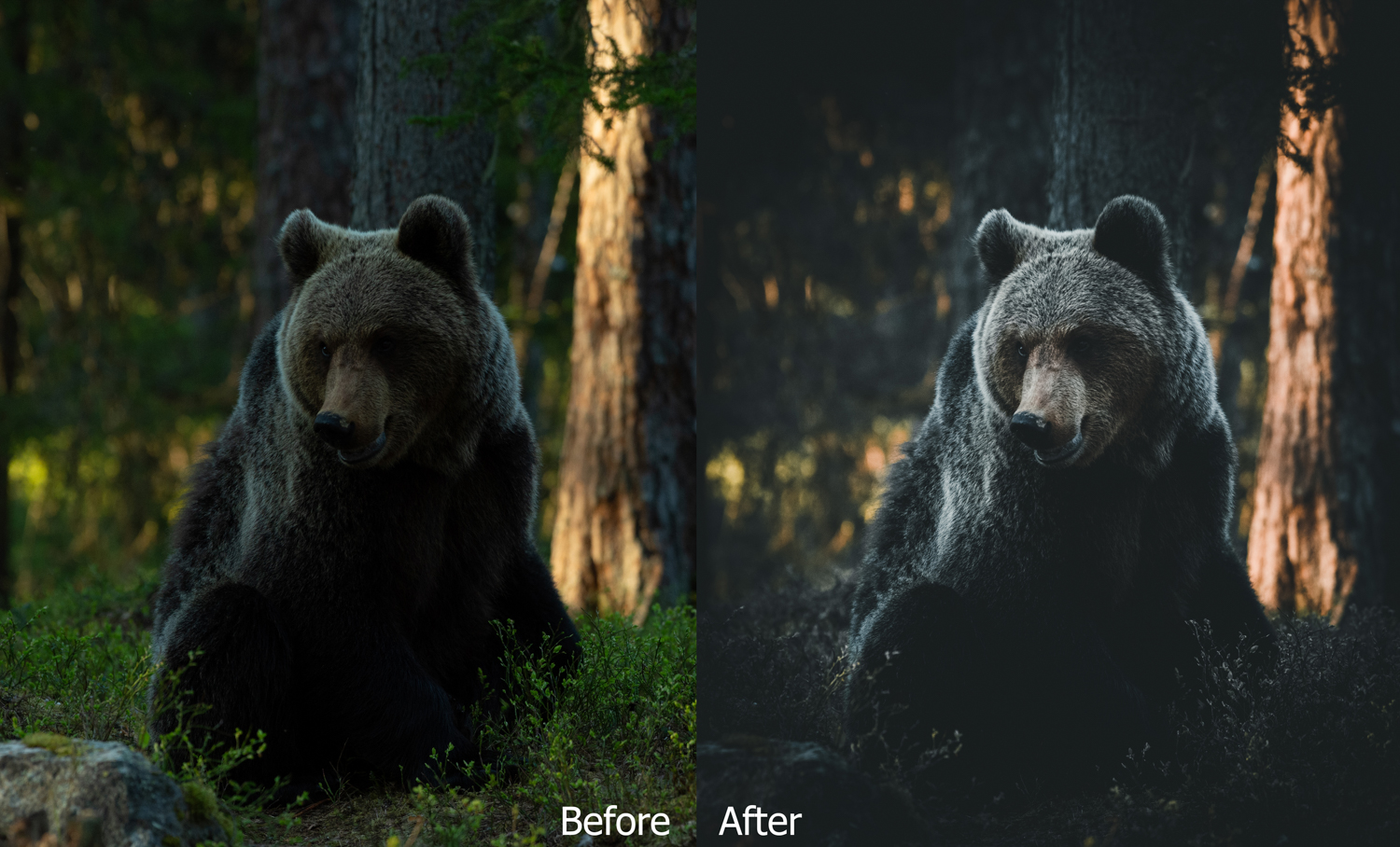6-Before&After.jpg