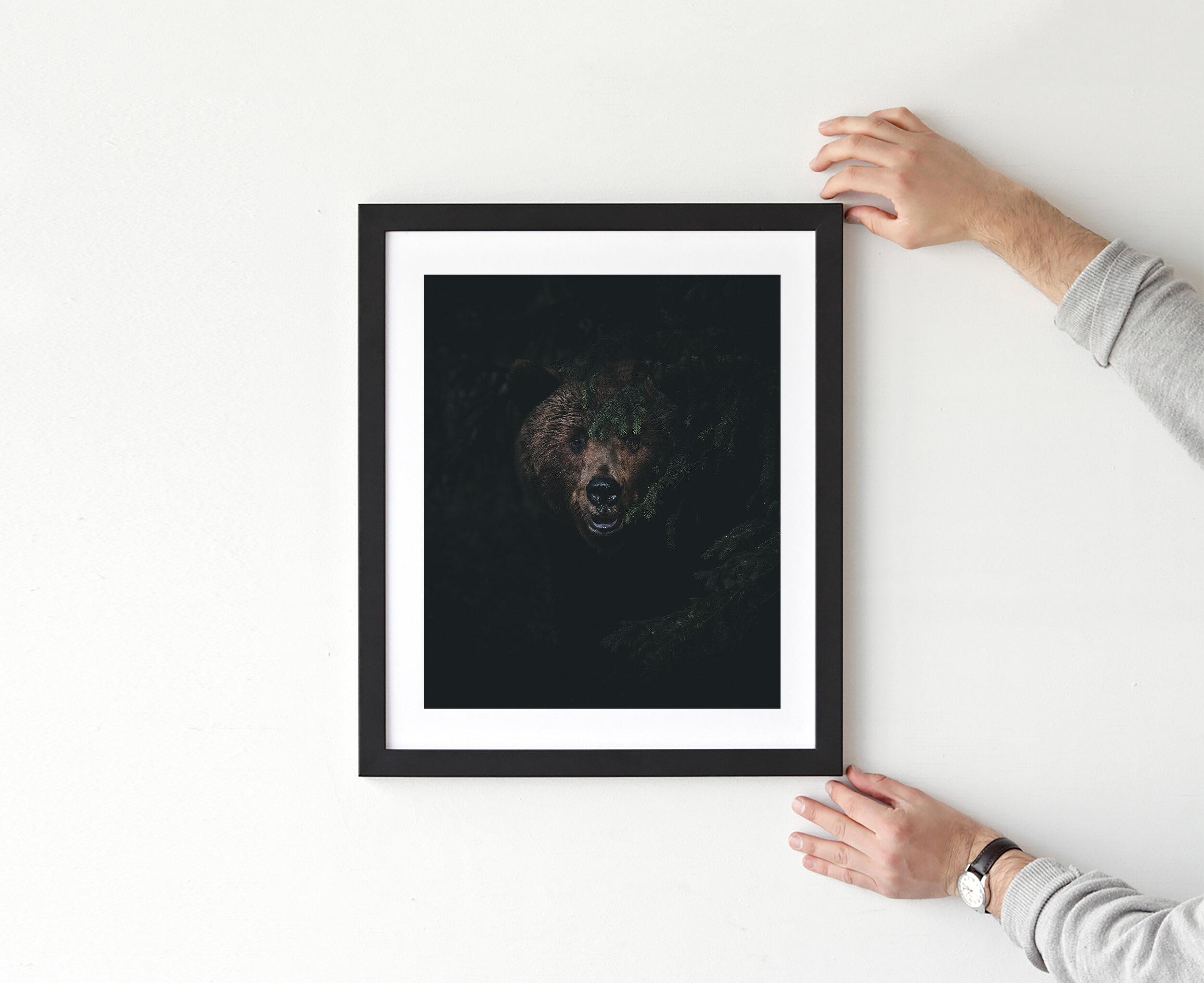 Bjørn 16.jpg